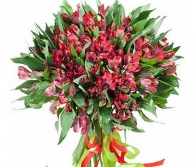 букет из цветов алой альстромерии