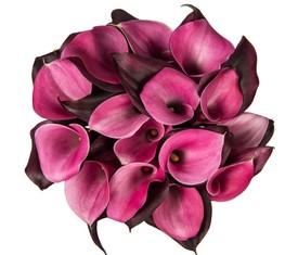 черные и розовые каллы
