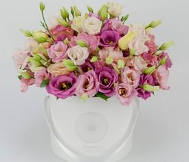 цветы розовой эустомы лизиантусов в шляпной коробке