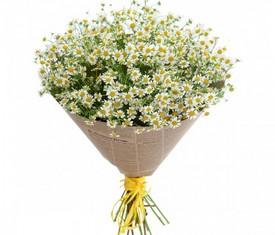 Букет из 25 цветов полевых ромашек купить