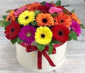 цветы герберы в шляпной коробке