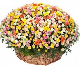 Корзина из 101 разноцветной кустовой розы