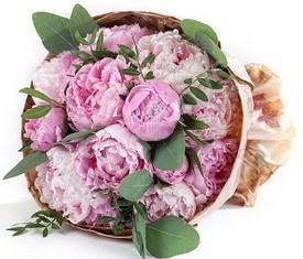 букет из 15 цветов пионов и эвкалипта