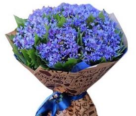 букет из 75 цветов василька