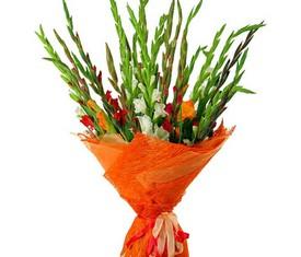 разноцветные гладиолусы ассорти