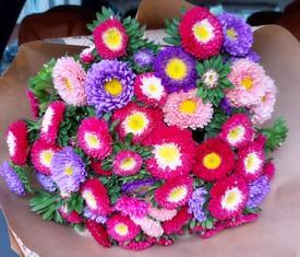 букет из 35 цветов астры