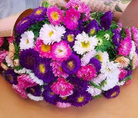 букет из 75 цветов астры