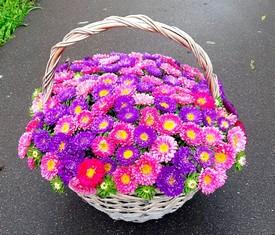 корзина из 101 цветка астры микс