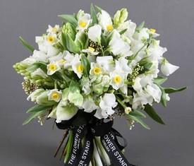 белые цветы нарциссов и тюльпаны
