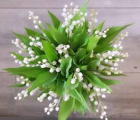 11 цветов ландышей