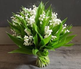 35 цветов ландышей