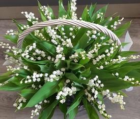 35 цветов ландыша в корзине