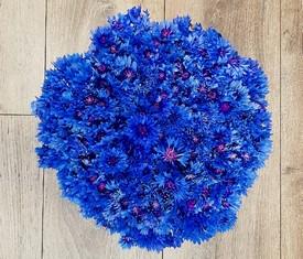 75 цветов васильков в букете