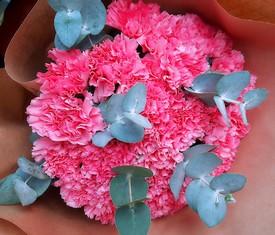 букет из 25 цветов гвоздики и эвкалипта