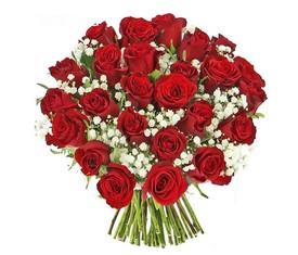 Букет из 19 Роз и гипсофилы